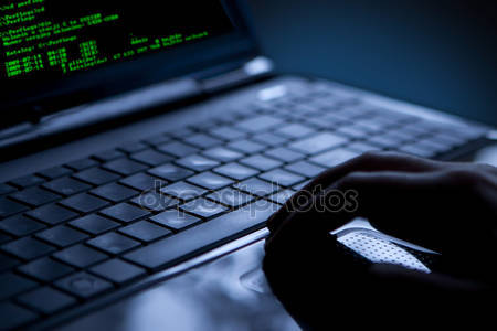 The Hacker's Handbook online training