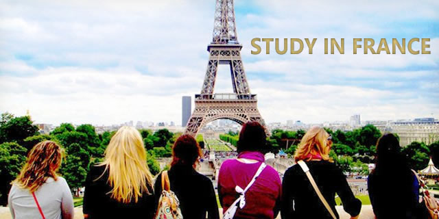 Study in France University With Paid Internship